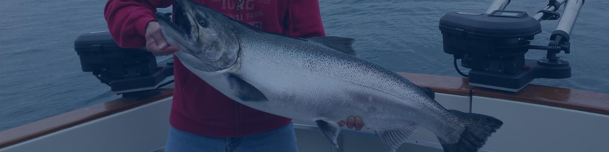 Lake Ontario Salmon Fishing Charters Toronto Salmon